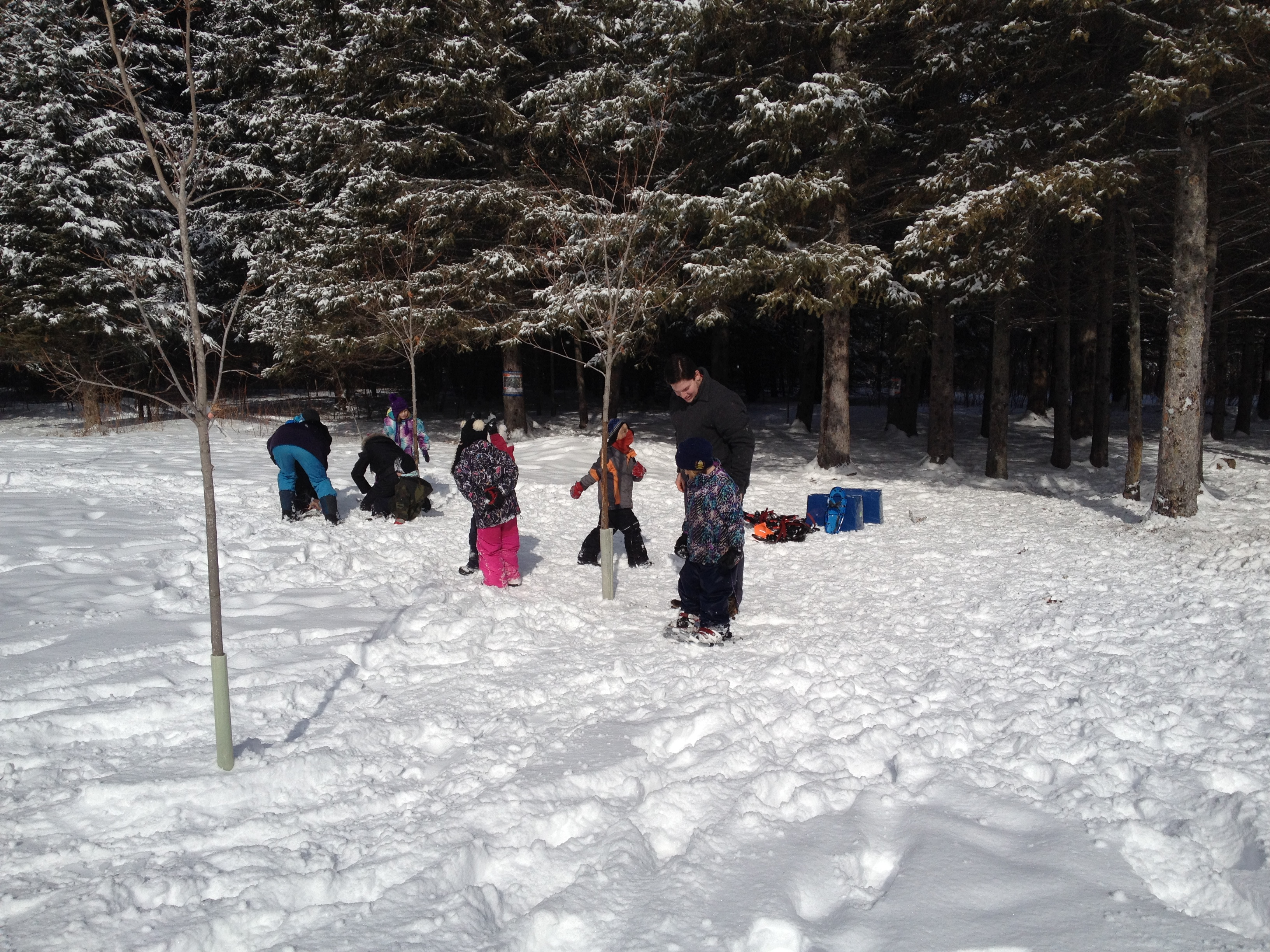 A photo of students snowshoeing